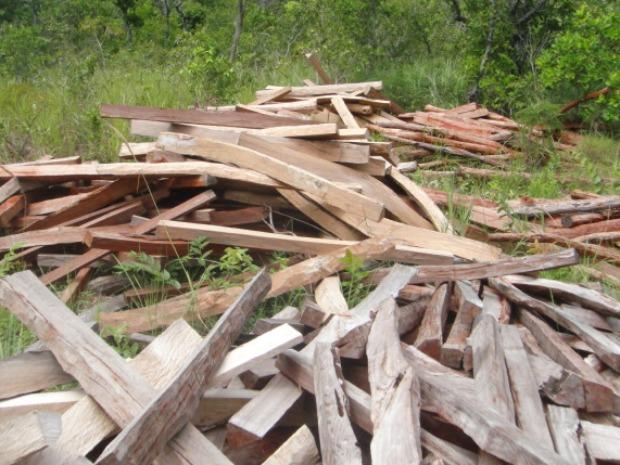 Os 57m³ de madeira estavam em uma fazenda localizada em Anastácio (Foto: Divulgação/PMA)
