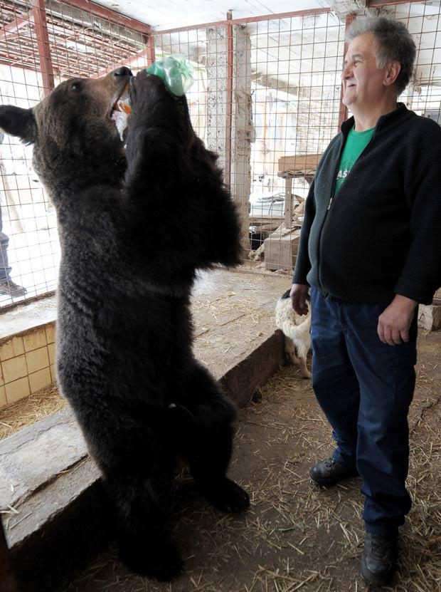 Bósnio Emin Ljutic alimenta urso de estimação. (Foto: Elvis Barukcic/AFP)
