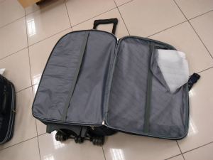 A 23-year-old Romanian national was arrested at the Pinto Martins International Airport in Fortaleza, Ceara, Brazil boarding a flight to Lisbon and carrying a suitcase with 3.9 kg of pure cocaine hidden in a secret compartment on Saturday, 03 March 2012.