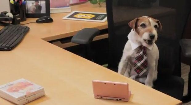 Cão de 'O Artista' é novo porta-voz da Nintendo em brincadeira para promover o game 'Nintendogs' (Foto: Divulgação)