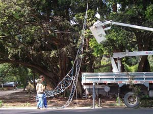 Secretaria do Meio Ambiente ajudou na colocação da ponte (Foto: Divulgação/PMPA)
