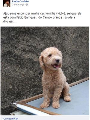 Cão (Foto: Reprodução)