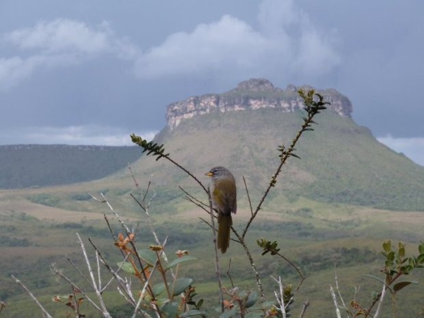 Mirante do Quebra-Bunda (Foto: Benjamin Salustiano (Beja Guia)/ChapadaTrip)