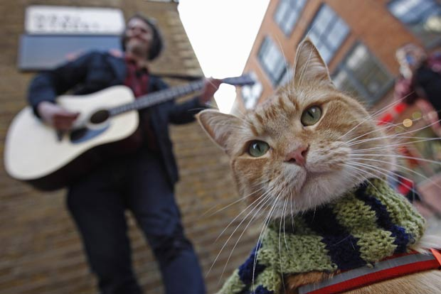 """Músico de rua britânico James Bowen e seu gato """"Bob'. (Foto: Luke MacGregor/Reuters)"""