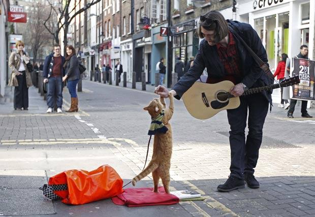 Gato 'Bob' virou parceiro do músico de rua britânico James Bowen. (Foto: Luke MacGregor/Reuters)