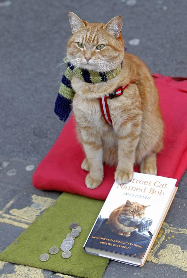 Bowen escreveu um livro chamado 'Um gato de rua chamado Bob'. (Foto: Luke MacGregor/Reuters)