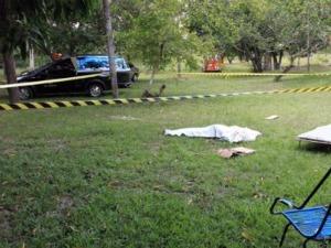 Idoso de 62 morre após ataque de marimbondos em MS (Foto: PC de Souza/Edição de Notícias)