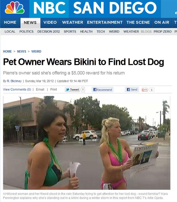 Mulheres enfrentam chuva e frio de biquíni para chamar a atenção e encontrar cachorro perdido. Mãe de garota pegou o cão um dia antes dela sair na rua (Foto: Reprodução)