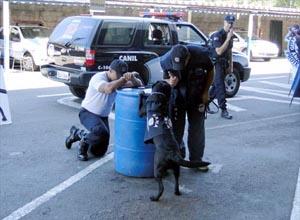 Guarda Municipal de Americana usa cães para evento de apresentação. (Foto: Divulgação / Prefeitura Americana)