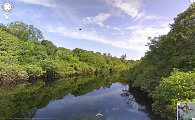 Google Street View faz imagens da Reserva do Rio Negro (Foto: Reprodução)