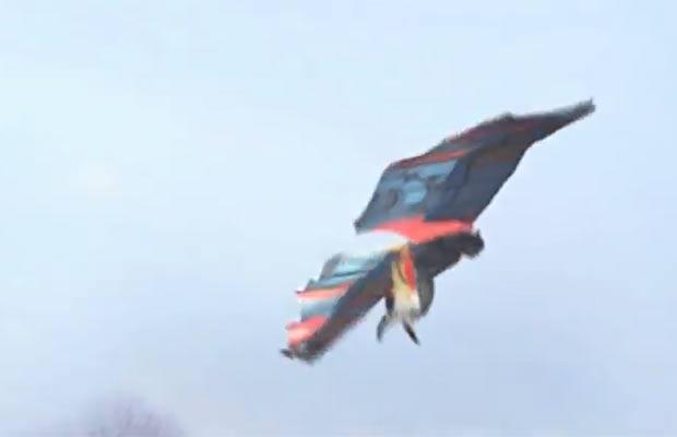 Holandês admitiu que o vídeo em que ele supostamente aparecia voando como um pássaro é falso. (Foto: Reprodução/YouTube)
