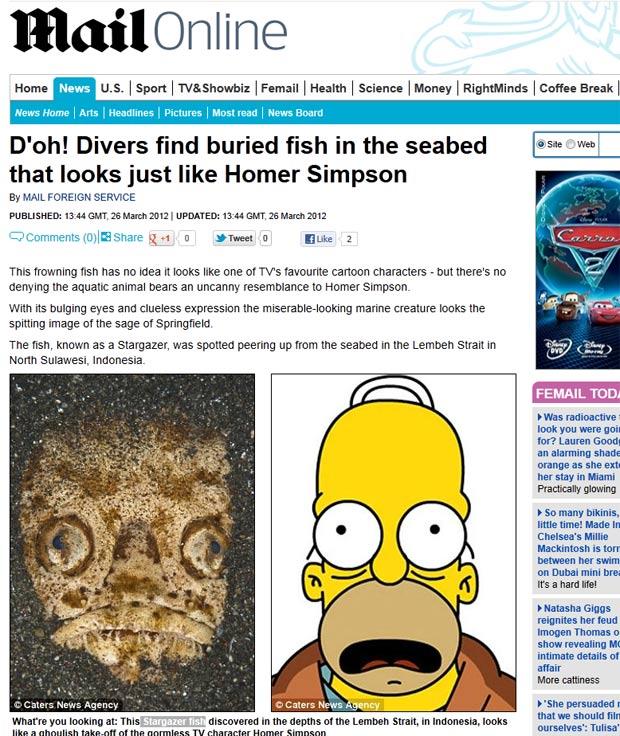 Peixe chamou atenção pela estranha semelhança com Homer Simpson. (Foto: Reprodução/Daily Mail)