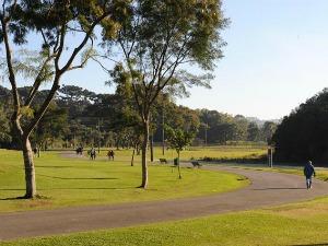 Parque Barigui (Foto: Divulgação/Prefeitura de Curitiba)