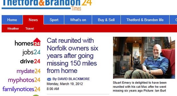 Gato foi encontrado após sumir há seis anos. (Foto: Reprodução)