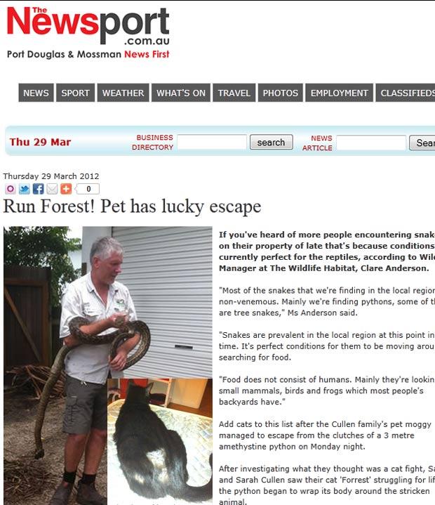 Gato escapou por pouco de virar comida de uma píton de 3 metros. (Foto: Reprodução)