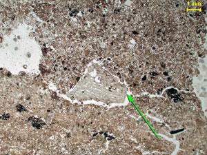 Pedaço de osso chamuscado há 1 milhão de anos (Foto: Paul Goldberg/Divulgação)