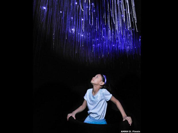 """Aqui foi recriado um fenômeno encontrado nas cavernas Waitomo, na Nova Zelândia. Ao olhar para cima, o visitante vê o que parecem ser """"linhas de pesca"""" pegajosas desprendidas de larvas bioluminescentes de mosquitos para atrair presas.  (Foto: AMNH D. Finnin )"""