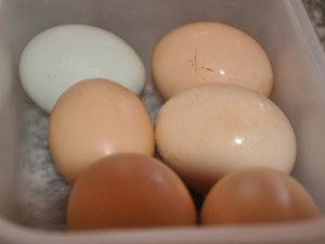Ovos para receita de sopa paraguaia (Foto: Anderson Viegas/G1 MS)