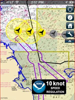 Alerta Baleia permite que os navios identifiquem a localização de espécimes e evitem colisão com os animais. (Foto: Reprodução)