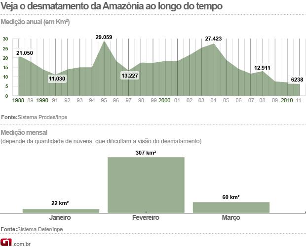 Desmatamento Amazônia (Foto: G1)