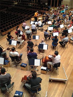 Ensaio da Orquestra Sinfônica do Estado de São Paulo (Osesp) na Sala São Paulo (Foto: Ana Carolina Moreno/G1)