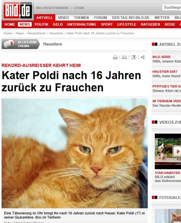 Gato chamado 'Poldi' foi achado 16 anos após desaparecer. (Foto: Reprodução/Bild)
