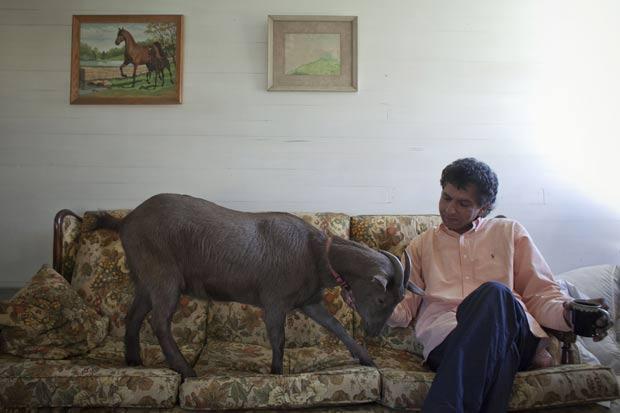 Cyrus Fakroddin com sua cabra de estimação em sua casa em Summit. (Foto: Allison Joyce/Reuters)