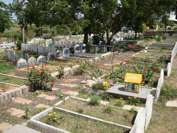 Cidades como Botucatu oferecem um local específico para enterrar o bichinho de estimação.  (Foto: Divulgação)