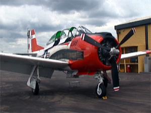 O avião T-28 do empresário Fernando Botelho (Foto: Reprodução/EPTV)