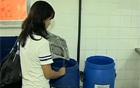 Escolas usam lixo orgânico na reciclagem (Reprodução / TV Globo)
