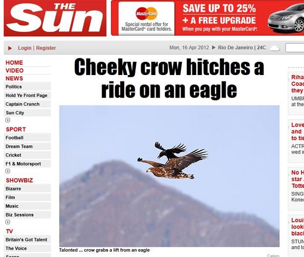 Corvo audacioso pegou uma carona nas costas de uma águia. (Foto: Reprodução/The Sun)