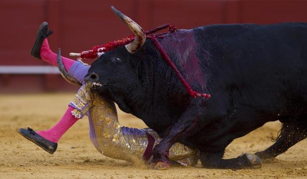 O toureiro espanhol Antonio Nazaré foi atingido na panturrilha direita durante uma tourada na Maestranza, em Sevilha, nesta quarta-feira (18) (Foto: Marcelo del Pozo/Reuters)