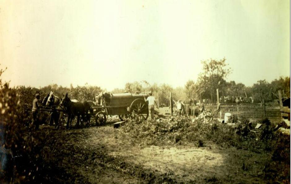 Descarga de lixo em chácara, em 1912