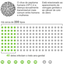 HPV causa verrugas genitais e cncer de colo do tero ou pnis (Arte/G1)
