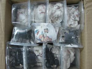 Aracnídeos passaram cerca de 30 dias acondicionados em pacote (Foto: Ibama/Divulgação)