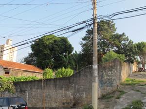 Nelson x Estevão (Foto: Roney Domingos/ G1 )
