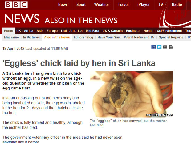 Galinha ovo (Foto: Reprodução/BBC)