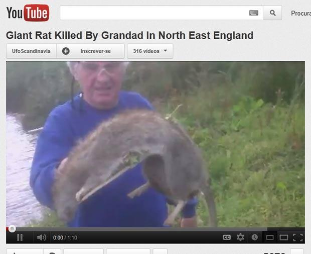 Brian Watson pode ser processado por crueldade contra os animais por ter matado um rato de 1,2 metro. (Foto: Reprodução/YouTube)