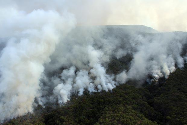 Incêndio destrói floresta na cidade mexicana de Guadalajara nesta terça-feira (24) (Foto: AFP)