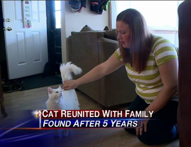 Lindsay Radke reencontrou seu gato de estimação mais de cinco anos depois. (Foto: Reprodução)