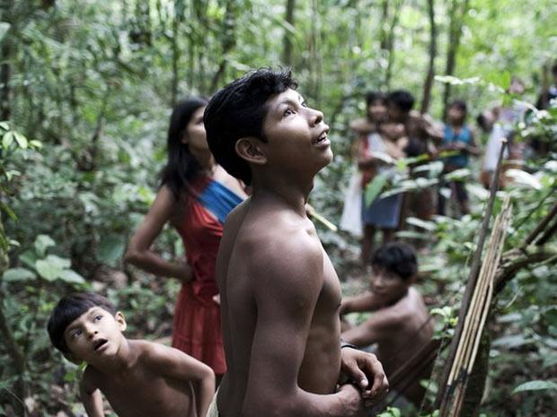 Os Awá são caçadores/coletores e viajam em grupos grandes de cerca de 30 pessoas. Caçadas podem durar semanas. Mas os grupos são vulneráveis a ataques de pistoleiros contratados por cortadores de madeira e criadores de gado.  (Foto: Survival/BBC)