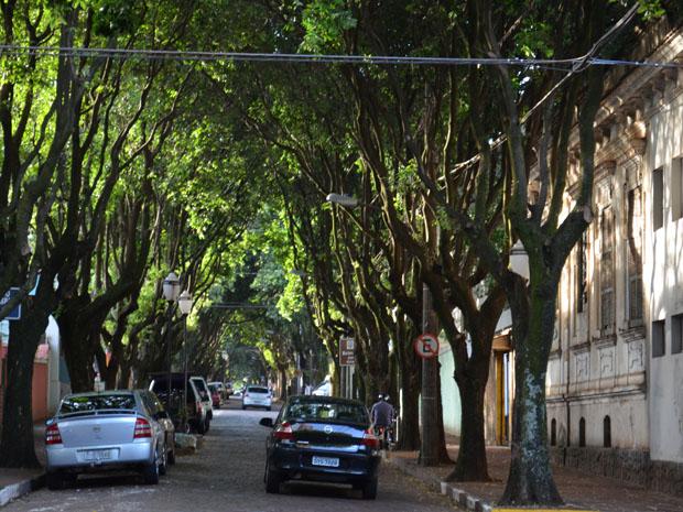 Bulevar em Araraquara foi reformado em 2007 (Foto: Felipe Turioni/G1)
