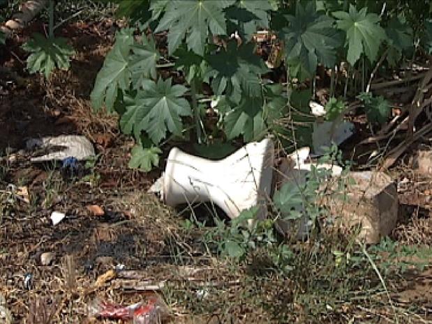 Em alguns terrenos é possível encontrar lixo, o que atrai insetos (Foto: Reprodução / TV Tem)