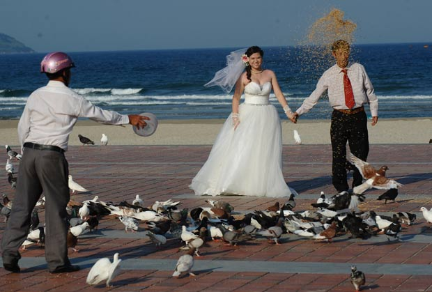 Homem jogou comida para pombos e 'atrapalhou' foto de noivos no Vietnã. (Foto: Hoang Dinh Nam/AFP)