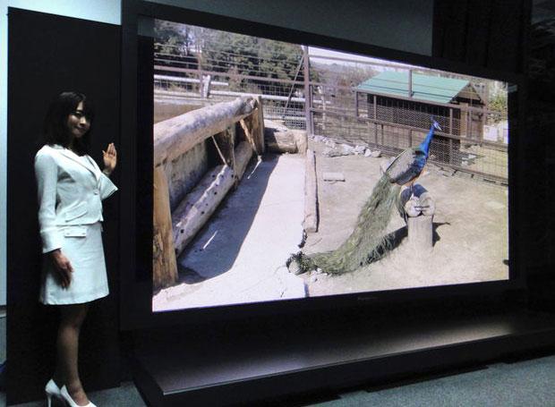 Televisor tem 145 polegadas e 16 vezes mais definição do que os aparelhos HDTV atuais (Foto: Divulgação)