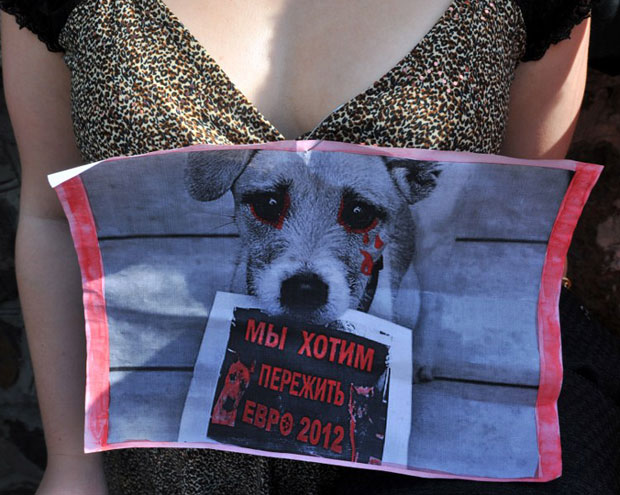 Ativista ucrânia animais (Foto: Sergei Supinski/APF)