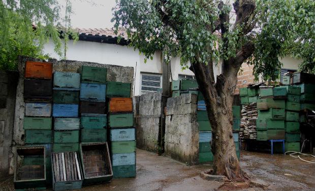 Caixas utilizadas para abrigar a colmeia foram recolhidas da chacára e ocupam casa do apicultor (Foto: Fabio Rodrigues/G1)