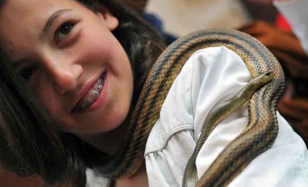 As cobras~, que não são venenosas, podiam ser manuseadas por quem acompanhou o evento católico (Foto: Tiziana Fabi/AFP)