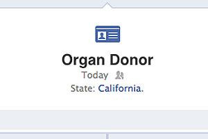 Ao acrescentar a opção de doador de órgãos, informação vai aparecer na linha do tempo (Foto: Divulgação)