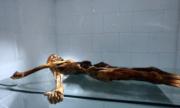 Otzi, apelido dado ao corpo com mais de 5 mil anos de idade encontrado em uma geleira na Europa. Pesquisadores encontraram células de sangue em ferimentos. (Foto: Andrea Solero/AFP)
